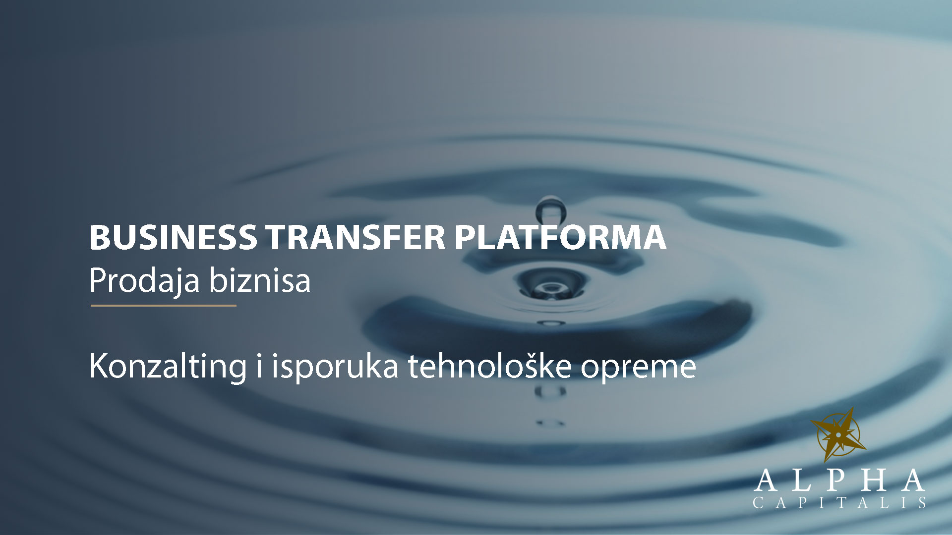 Business-transfer-platforma-konzalting-isporuka-tehnološke-opreme